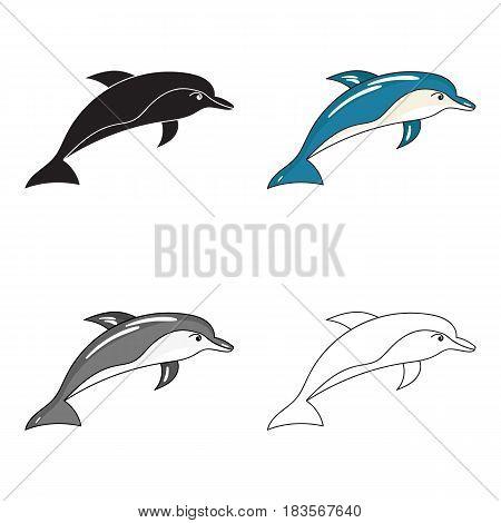 Dolphin icon in cartoon design isolated on white background. Sea animals symbol stock vector illustration.
