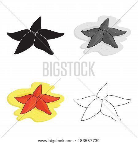 Seastar icon in cartoon design isolated on white background. Sea animals symbol stock vector illustration.