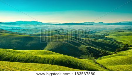 Volterra foggy panorama rolling hills and green fields in the morning. Tuscany Italy Europe