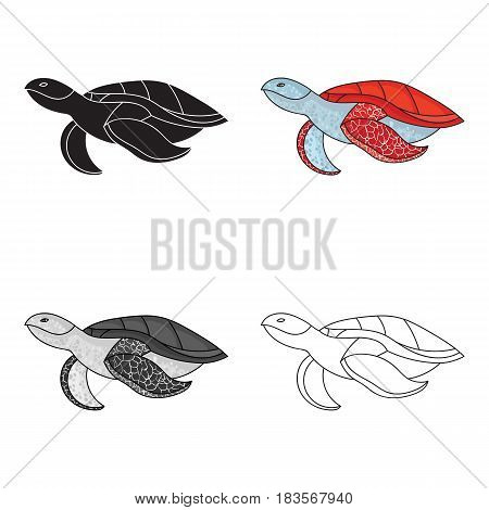 Sea turtle icon in cartoon design isolated on white background. Sea animals symbol stock vector illustration.