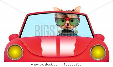 Funny puppy sitting in the red cabriolet with sunglasses isolated on white background. Car rental and buying concept concept. 3D illustration with clipping path