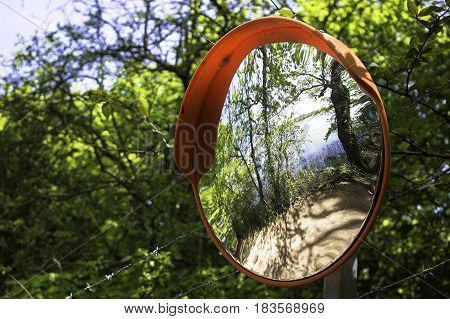 Convex round mirror on a woodland pathway