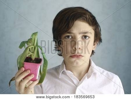 Frustrated Teenage Kid With Wilted Pot Plant