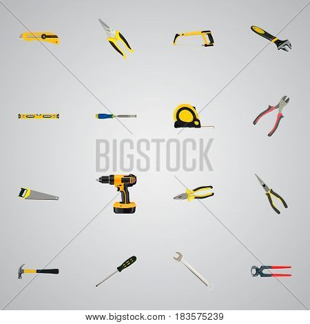 Realistic Carpenter, Pliers, Plumb Ruler And Other Vector Elements. Set Of Tools Realistic Symbols Also Includes Screwdriver, Cutter, Tool Objects.