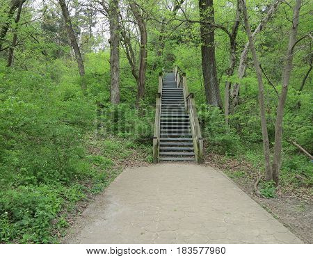 Wooden Stairway at Starved Rock State Park in spring