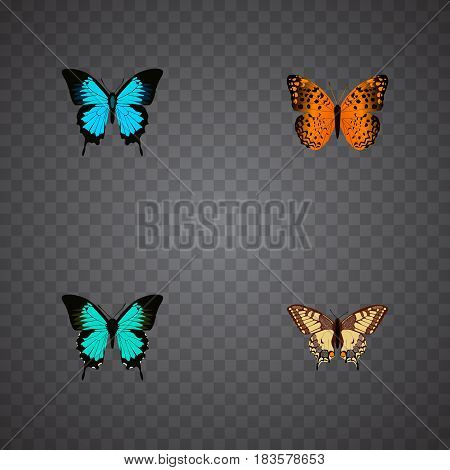 Realistic Danaus Plexippus, Papilio Ulysses, Copper And Other Vector Elements. Set Of Moth Realistic Symbols Also Includes Swallowtail, Monarch, Blue Objects.
