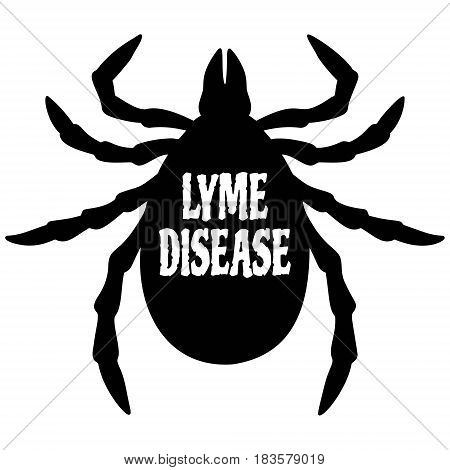 A vector illustration of a Lyme Disease Tick.