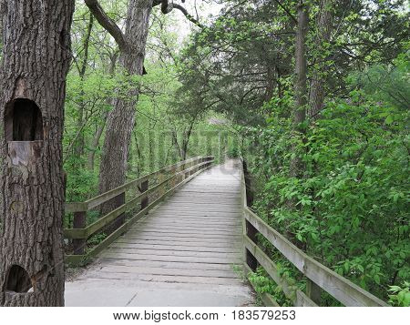 Wooden Walkway in spring at Starved Rock State Park in Illinois