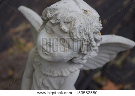 Angel Statue in a garden setting at an interesting angle.