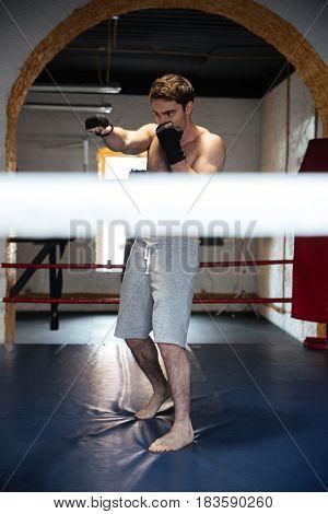 Full-length shot of man sportsman kicking and training on ring