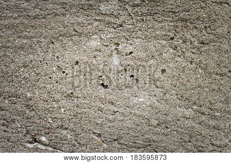 Old Cement Background