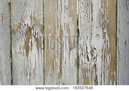 Texture of old boards with heavily tattered gray paint.