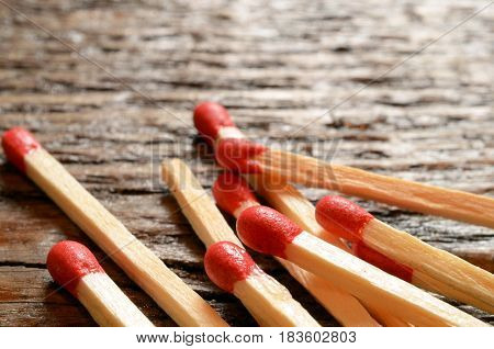 A close up image of several wooden matchsticks.