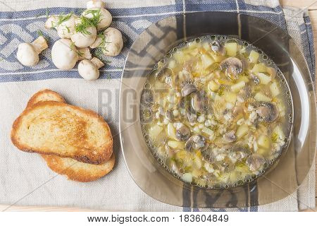 Fresh Champignons Soup With Toasts And Fresh Greens Made In House Conditions