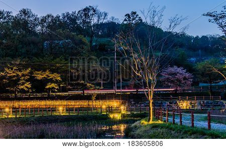 Beautiful landscape of a country park with small pond and roped walkway taken at night.