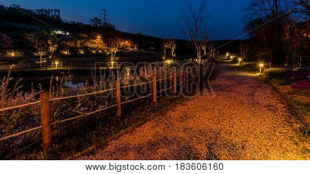 Beautiful landscape of a roadway in a country park with small pond and roped walkway taken at night.