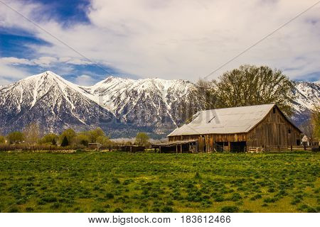 Old Barn On Ranch At Base of Snow Covered Mountains