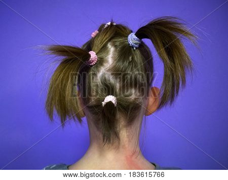 Rear view of a child's hairstyle hair gathered in several tails