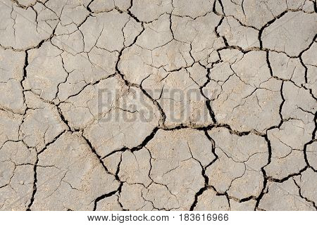 drought earth closeup as textured background