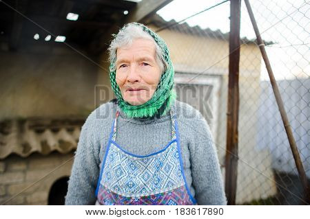 Old peasant woman. Calm wise sight. gray hair from under a scarf. Wrinkled face.