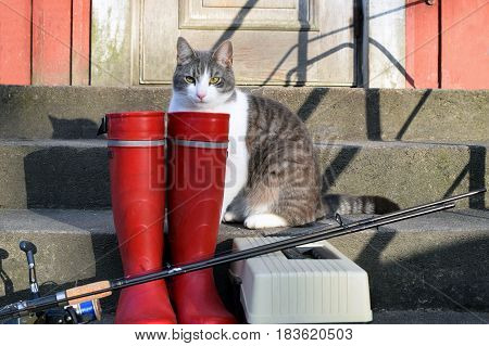 Fishing reel, red rubber boots and tackle box on stairs. Cat is waiting fish from fishing trip.