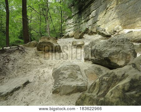 Various shades of green from trees in spring contrast against the limestone and sandstone walls at St. Louis Canyon in Starved Rock State Park