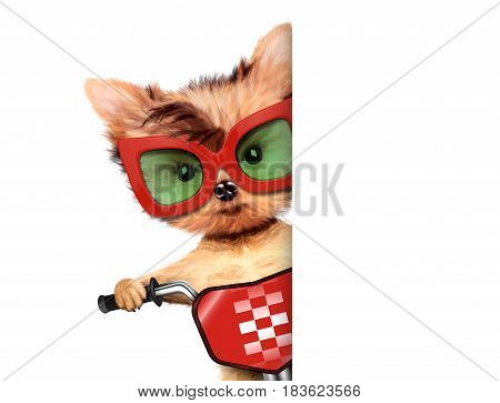 Funny racer dog sitting on a red bike and sunglasses. Sport and championship concept. Realistic 3D illustration with clipping path