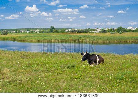 Rural landscape in central Ukraine with small river Samara at summer season.