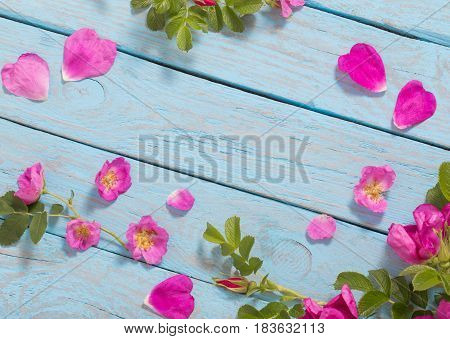 the pink roses on old blue table