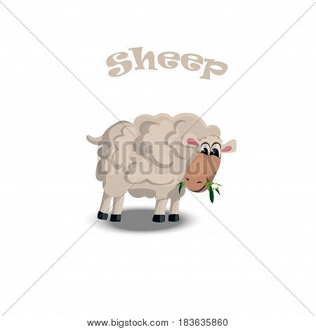 High quality original trendy vector illustration of a cute sheep. Farm Animals
