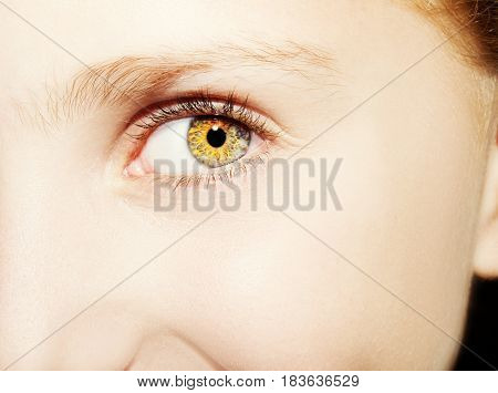 A Beautiful Insightful Look  Girl 's Eye. Close Up Shot