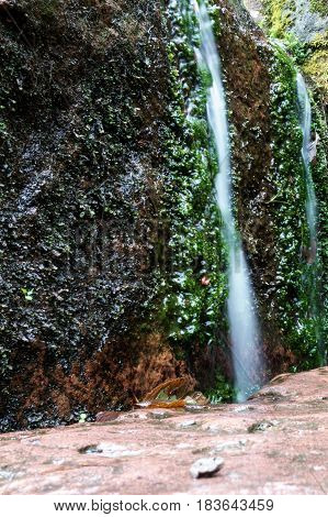 Slippery little waterfall in forest with moss