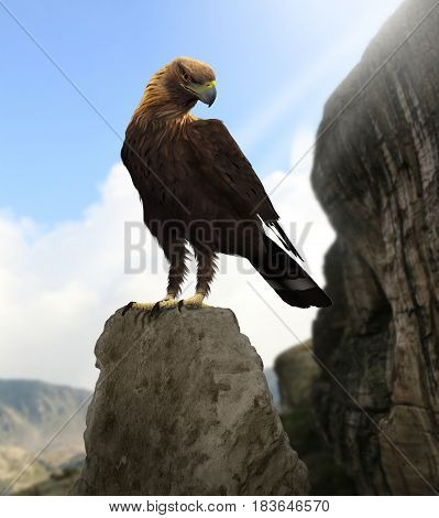 3D rendering of a majestic bald eagle stitting in the high mountains.