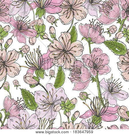 Realistic sakura hand drawn seamless pattern with buds, flowers, leaves. Colorful vintage style illustration