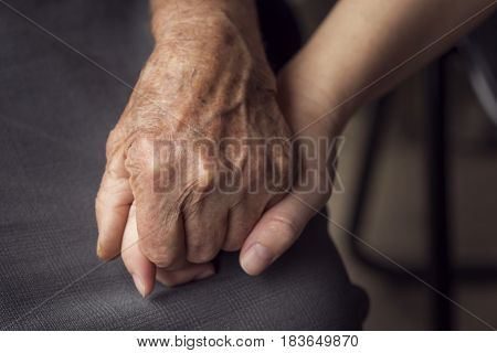 Close up of an old wrinkled and young hand with smooth skin one in another. Elderly care and respect selective focus