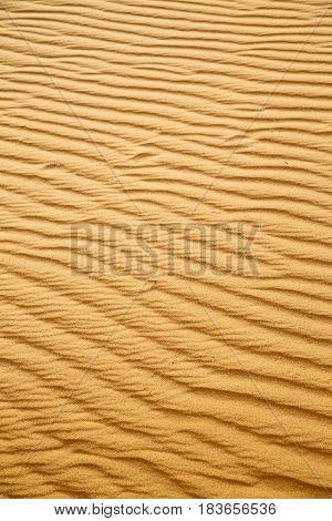 Brown Sand Dune  The Sahara Morocco Desert