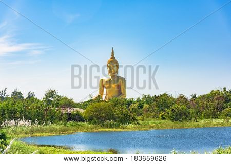 Panoramic View Of Giant Sitting Buddha Against Tropical Landscape