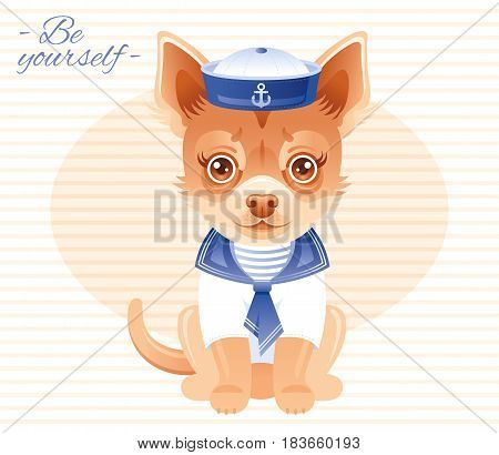 Summer fashion chihuahua puppy dog in sweet sailor clothes, hat, costume. Cartoon vector illustration isolated on white background.