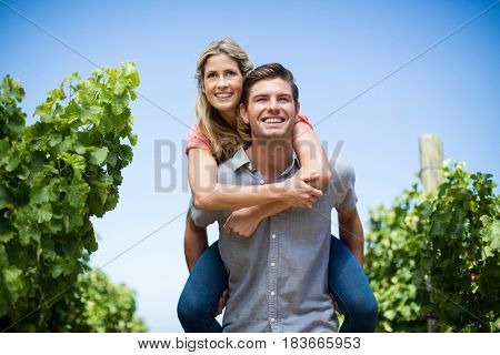 Happy young couple piggybacking at vineyard against blue sky