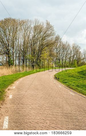 Bend in a Dutch country road with paving stones and white stripes. Beside the road are tall bare trees. Spring has begun recently.