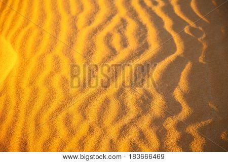 Africa   Dune In   Sahara Morocco Desert Line