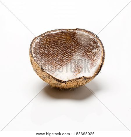 Asian Coconut Empty Shell Close Up, Studio Photography Isolated.