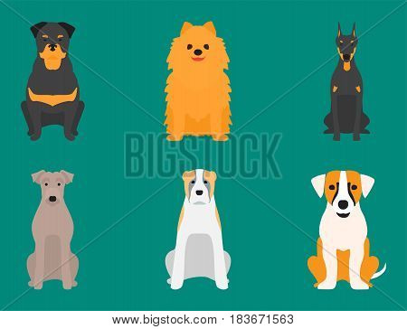 Funny cartoon dog character bread in cartoon style happy puppy and isolated friendly mammal vector illustration. Domestic element flat comic adorable mascot canine.