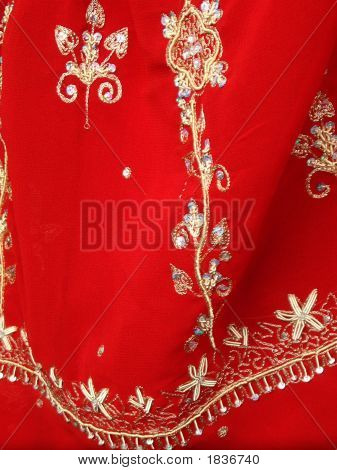 Sari The Indian Woman Wear
