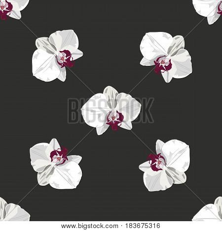 White hand drawn orchid seamless pattern. Vector flower orchid. Romantic color tropical flower orchid. Could be used s background, for textile, fabric, wallpaper, cards.