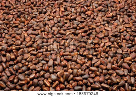 Pine nuts in the form of a background. View 2.