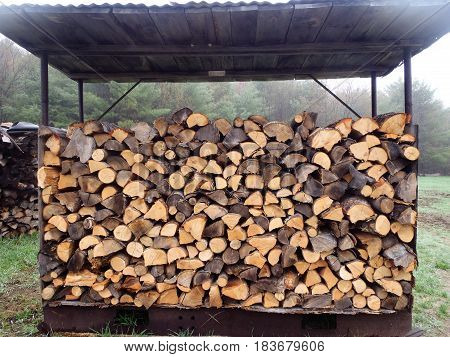 This will keep your wood dry and the background is evergreens!