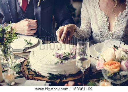 Bride and Groom Cutting Cake on Wedding Reception