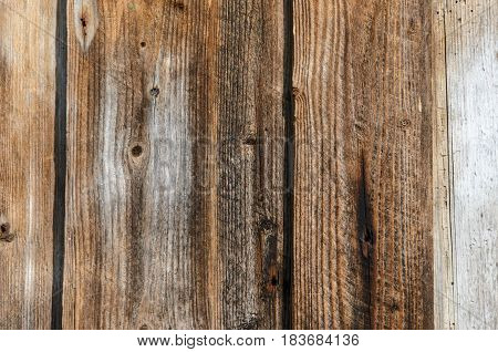 Wood texture. Background of old panels. Old wooden wall with faded planks