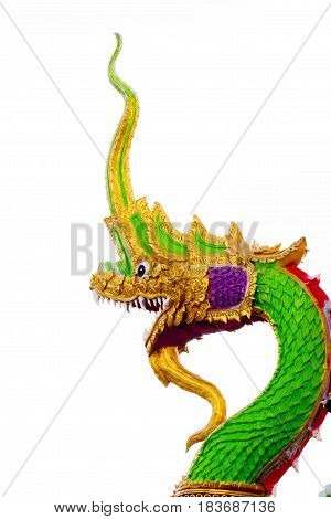 Closed up head of serpent and white background